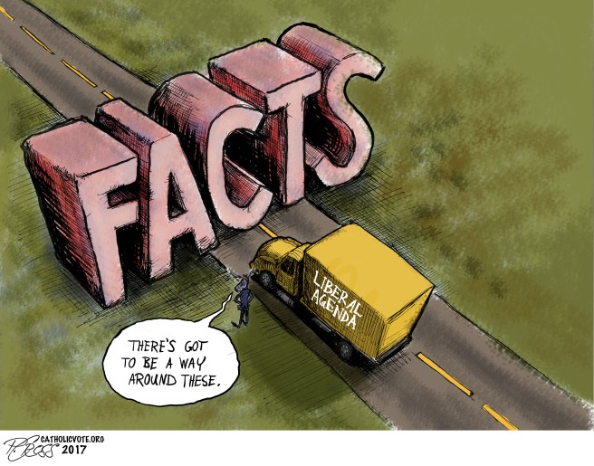 The Facts1