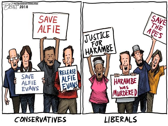 Alfie vs Harambe
