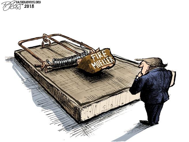 Fire Mueller