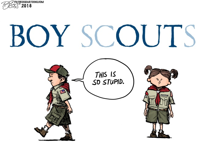 Boy Scouts final