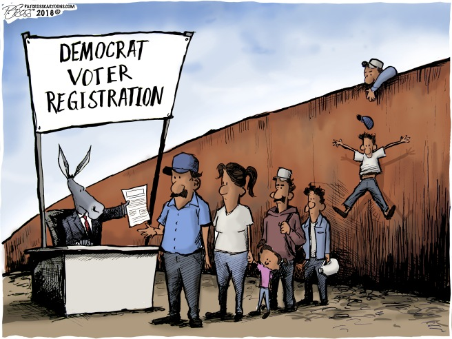 Dem Voter Registration
