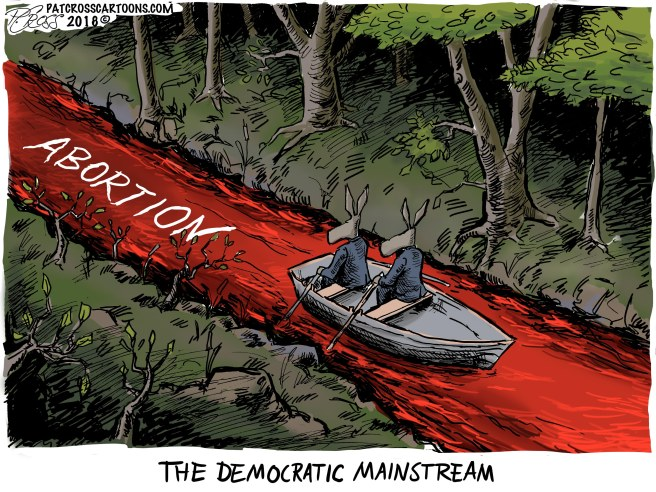 The Democrat Main Stream1